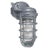 METAL CAGE WALL MOUNT LIGHT