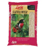 5LB LYRIC SAFFLOWER SEED