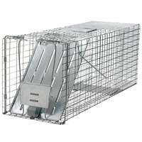 RACOON TRAP W/SPRING LOADED DO