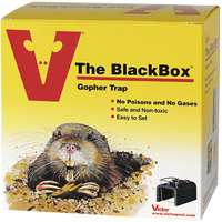 GOPHER TRAP BLACKBOX
