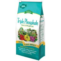 6.5LB BAG TRIPLE PHOSPHATE