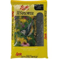 5LB BLACK OIL SUNFLOWER SEED
