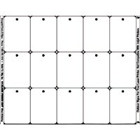 15 TAGS PER SHEET WHITE 2X2.25