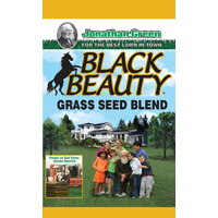 BLACK BEAUTY SEED 5LB